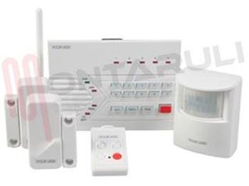 Immagine per la categoria Centrale allarme